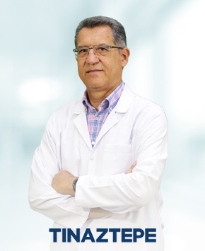 Associate Prof. Dr. İsmail Rıfkı Ersoy