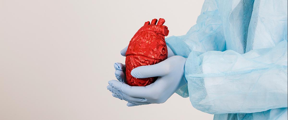 Kalp Damar Cerrahisi (KVC)